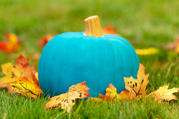 Teal pumpkins and candy alternatives
