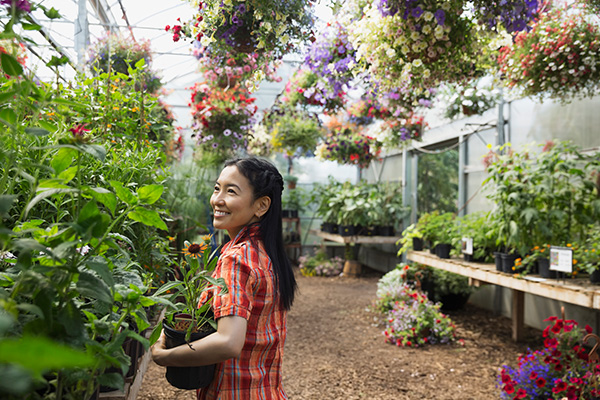 Picking the right plants for your garden