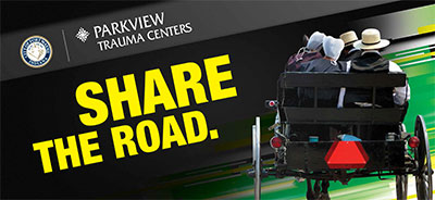 Share the Road graphic with buggy