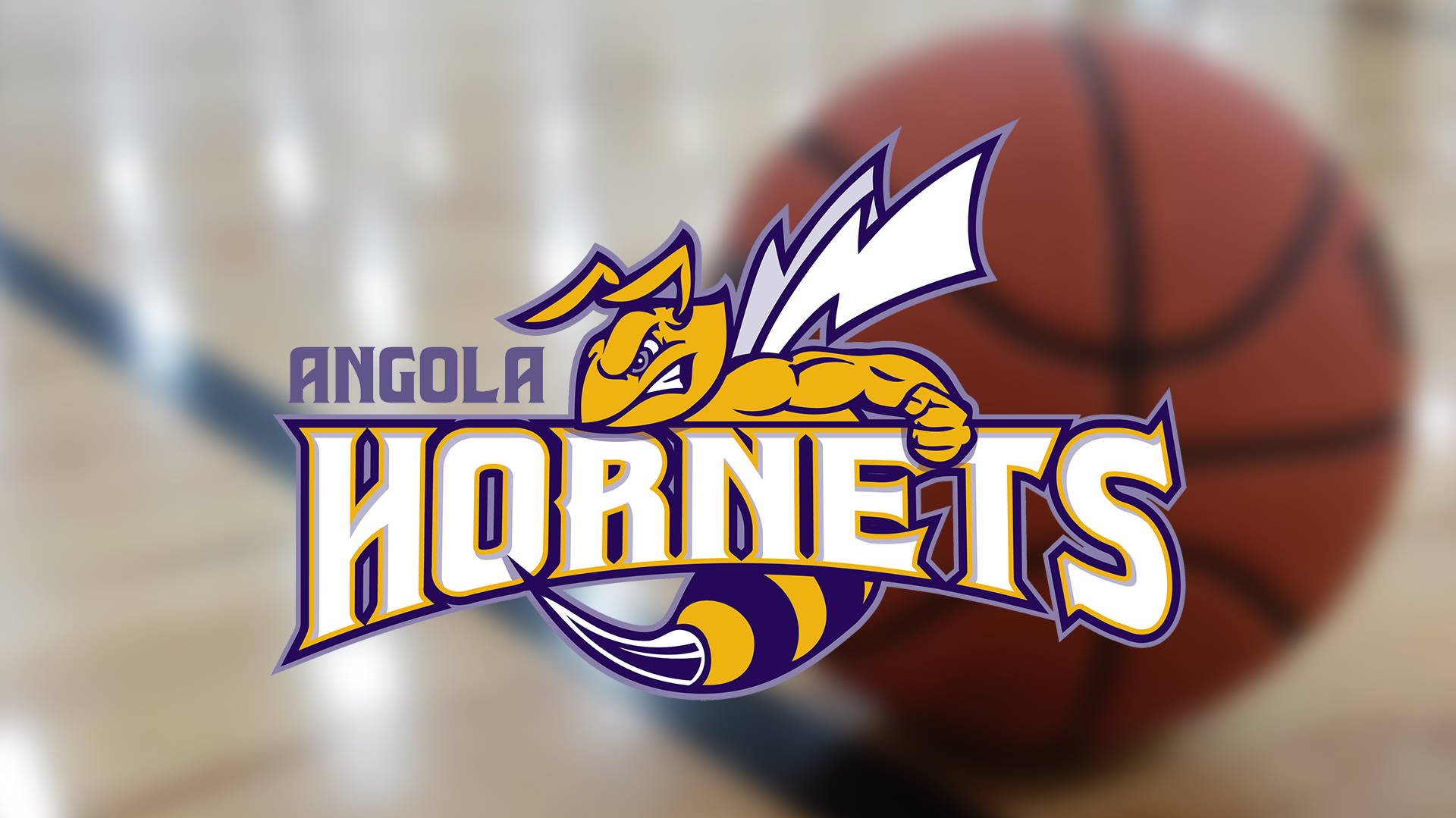 2019-20 Boys Basketball Preview: Angola Hornets