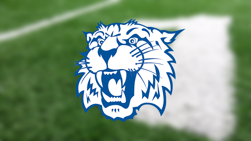 2019 High School Football Preview: Whitko Wildcats